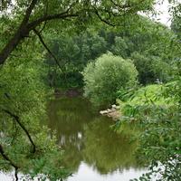 Кожурновка река