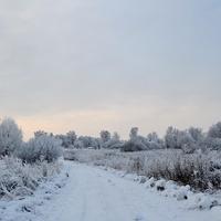 Владышино зимой