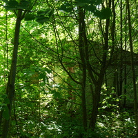 Постройка пионерского парка у верхнего пруда