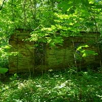 Поздния постройка, пионерского лагеря