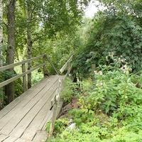 Лестница к речке Песья Деньга
