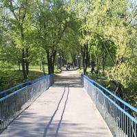 Мост на остров Коцюбинского