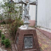 Памятник сербским солдатам и русским добровольцам.