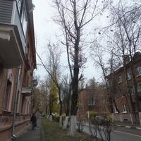 Улица в Северном