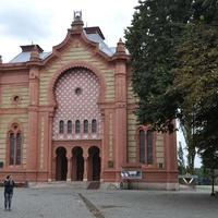 Бывшая Ужгородская синагога