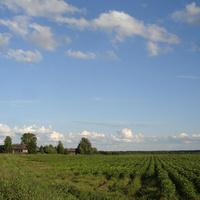 Деревня Ямки