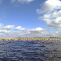 Озеро Бродская Лахта, осень, Новгородская область.