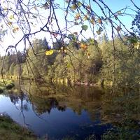 Гольцово, речка Меглинка, Новгородская область.