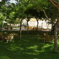 Парк возле Мертвого моря