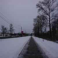 Санкт Петербургское шоссе