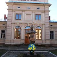Библиотека с Вячеславом Чорновилом