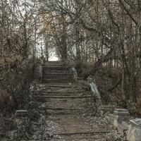 Лестница в городе Старица