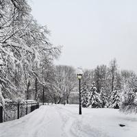 Дорожка в парке