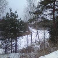 Солянка зимой.