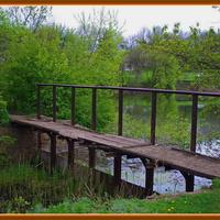 мостик между прудами