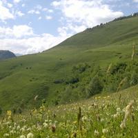 Цунтинский район село Шапих Республика Дагестан