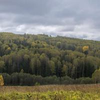 Окрестности села Петропавловск (Ишлык) Советского района Кировской области