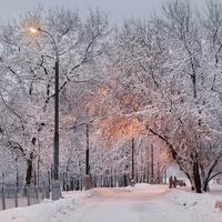 Прогулочная дорожка вдоль берега Москвы-реки