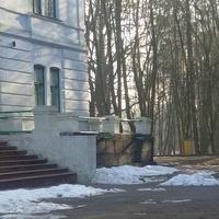 Браилов. Усадьба фон Мекк (музей Чайковского)