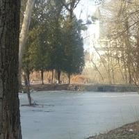 Браилов. В парке усадьбы фон Мекк (музей Чайковского), озеро
