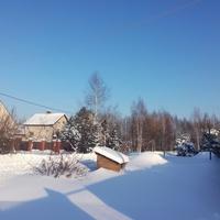 Зима в Клетино