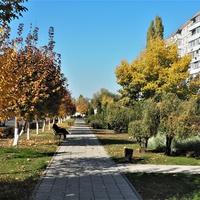 Осень на улице Простеёва