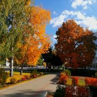 Улица Пролетарская в октябре