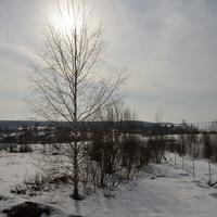 Вид на Костромино от леса, март 2017