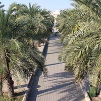 Парк Салмания.