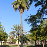 Андалуз парк.