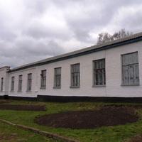 Лузанівська загальноосвітня школа I-III ступенів,Кам'янської районної ради,Черкаської області.