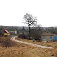 Въезд в деревню Вишневка .