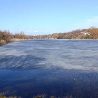 Радиванівський ставок.