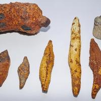 Ископаемая бодяга (губка)