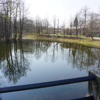 Река Кристателька.Её плотина.