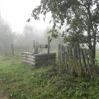 Туман, д. Рогово