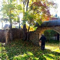 Золотая  осень, д.Рогово