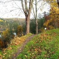 Осень,д.Рогово