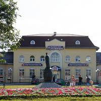 Бронзовый памятник Луховицкому Огурцу