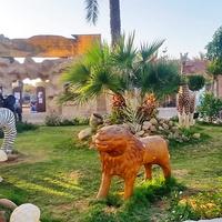 Шарм-эль-Шейх. У зоопарка