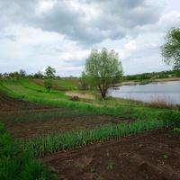 Вид на огороды (Мартыновка)