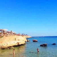Египет. Шарм-эль-Шейх. У моря.