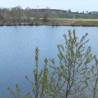 пруд на реке Выла
