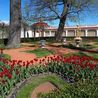 Монплезирский сад