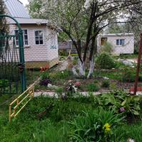 Дом с цветником