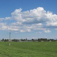 Деревня Ольшаники-2