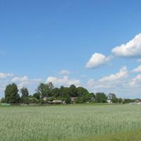 Деревня Ольшаники-1.