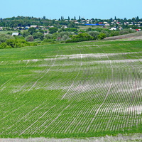 Нижний Кисляй, вид с южной окраины