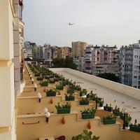 Анталья. вид из отеля