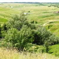 Исток реки Таганка